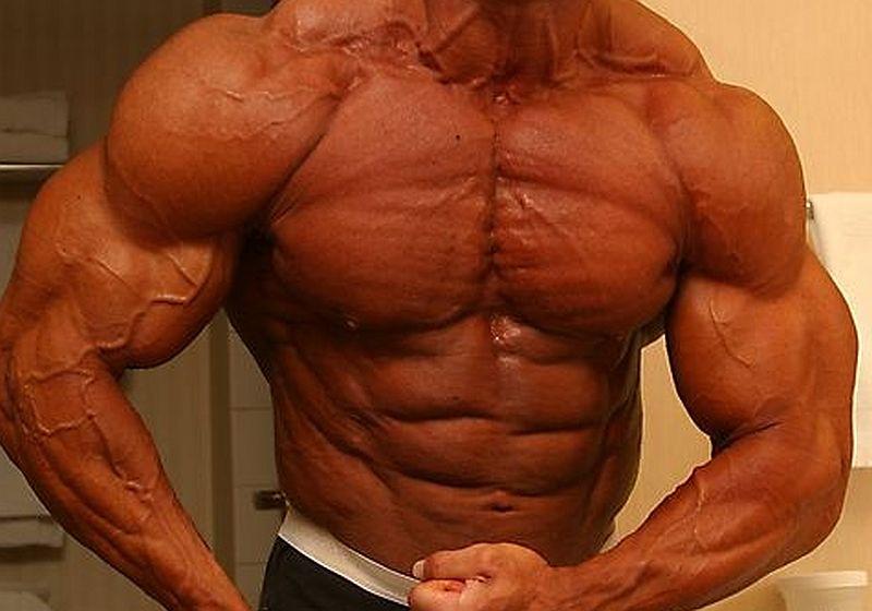 Eficácia dos esteroides anabolizantes na construção de diferentes grupos musculares